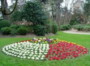 Cómo hacer un jardín