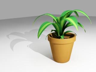 Plantar en macetas