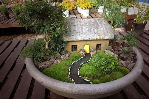 jardín en miniatura