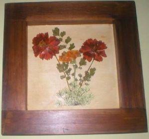 Prensado de flores