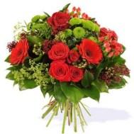 Rosa, crisantemo verde