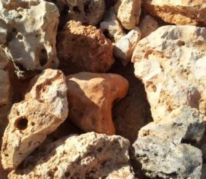 Piedras decorativas para tu jardín 3