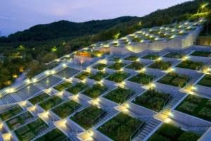 jardin botanico iluminado