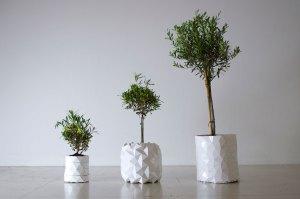 Growth, el macetero que crece a la vez que nuestras plantas 1