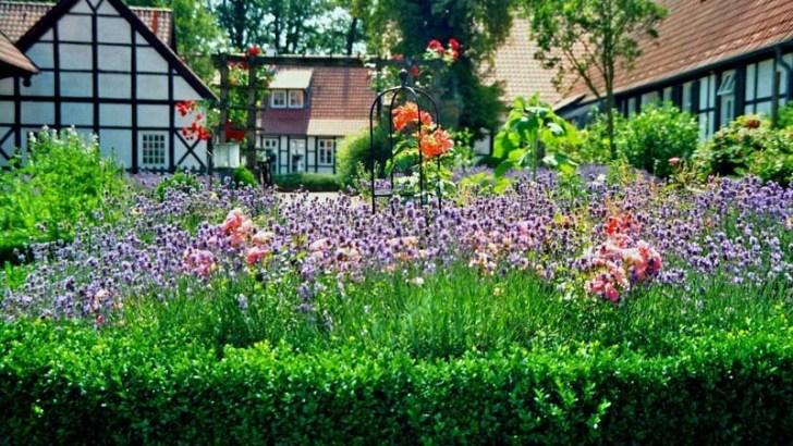 4 consejos para los primeros pasos en un jardín