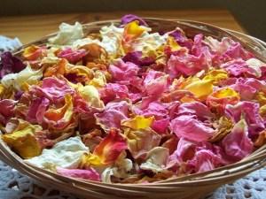 consejos-para-secar-las-flores