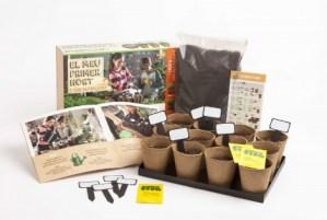 kit-infantil-cultivo