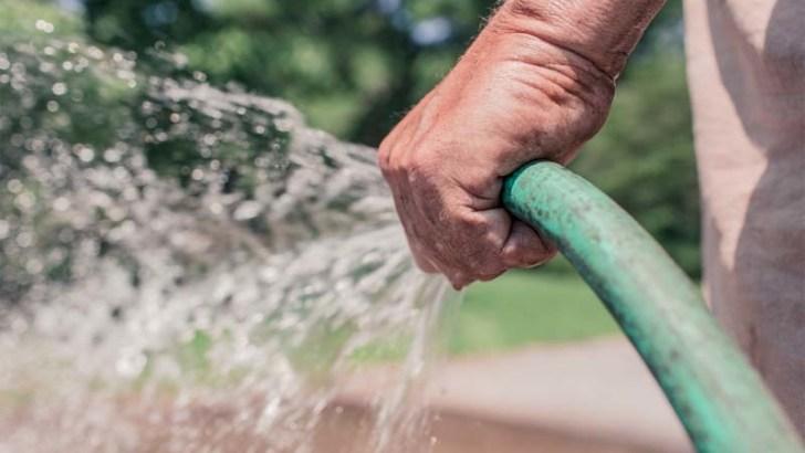 Aguas grises para regar las plantas
