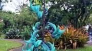 Strongylodon macrobotrys: la parra de jade