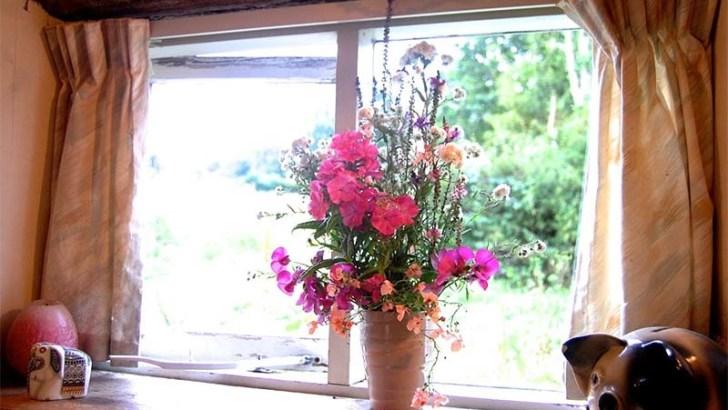 Cómo cuidar correctamente las flores