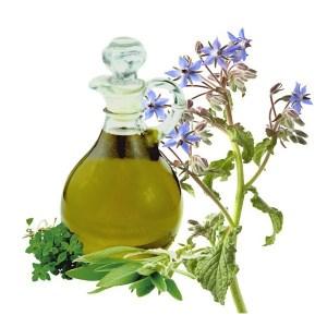 aceite-vegetal-borraja