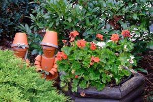 Proteger las plantas del calor