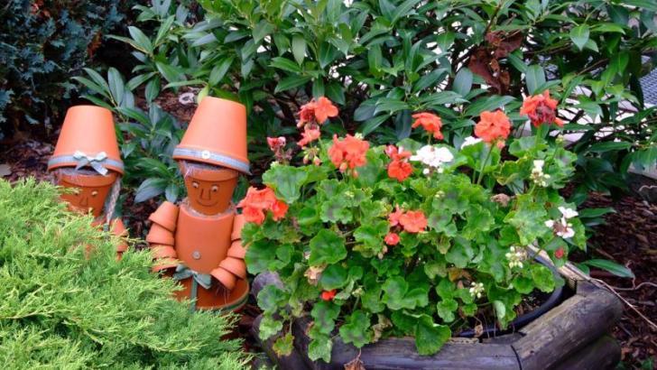 Proteger las plantas del calor asfixiante. Patios y terrazas.