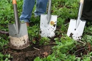 plantando-en-el-jardin