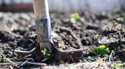 Cómo ser jardinero