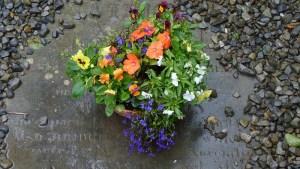 flores-en-un-cementerio