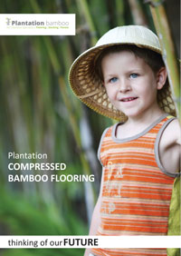 Compressed flooring Brochure