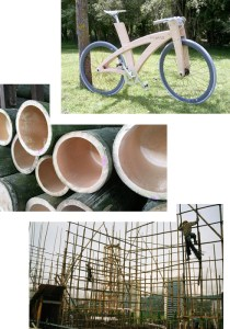 bamboo_bike_panels_plantation_new zealand_nz_sustainable_eco-friendly_strong_hard_design_building