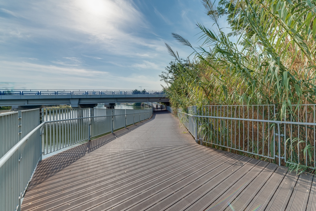 Landscaped walkway made from Plantation Bamboo X-treme decking