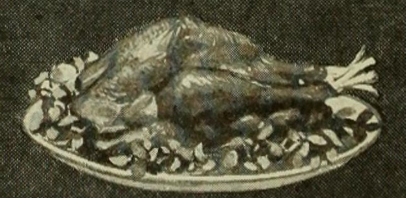 Historic turkey image