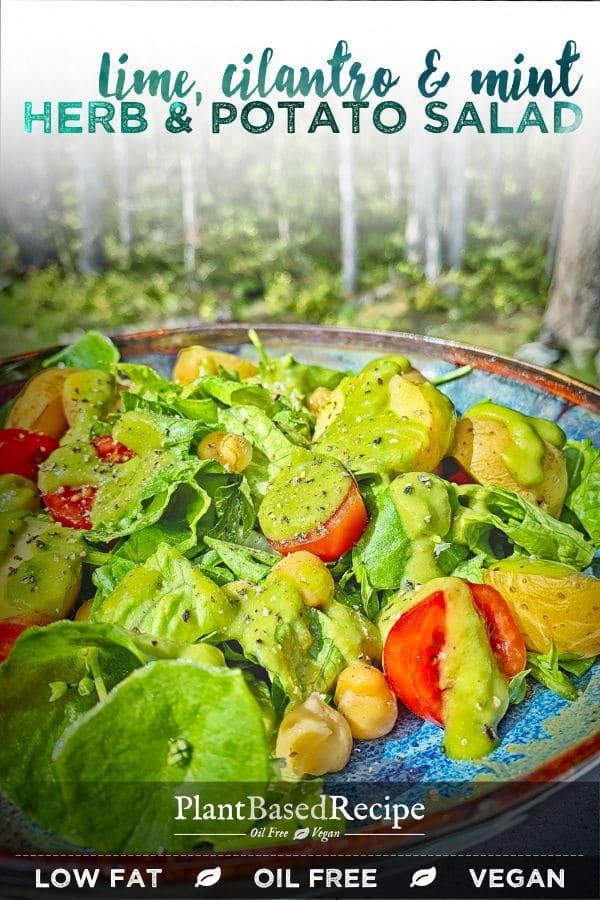 Herbed salad with herbed dressing - oil free vegan recipe.