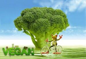 plant-based for life - plant-based diet