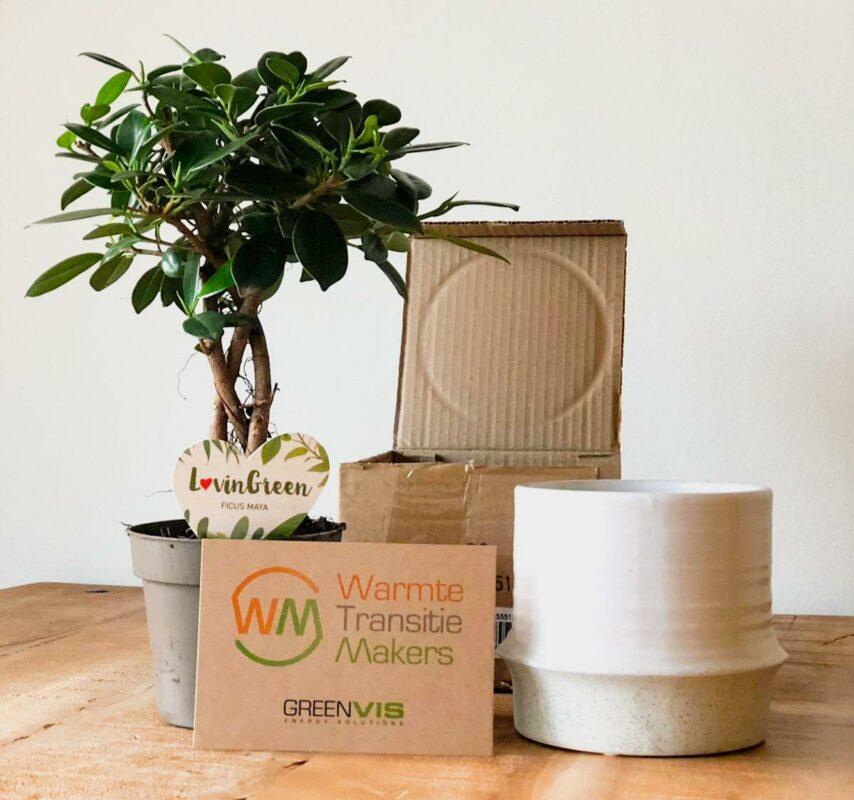 plant relatiegeschenk als duurzaam eco relatiegeschenk