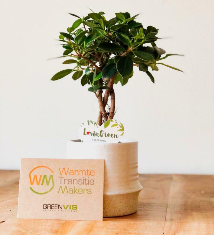 plant relatiegeschenk als duurzaam eco relatiegeschenk personaliseren
