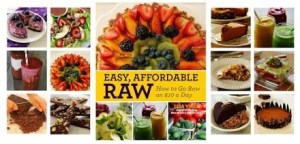 Easy Affordable Raw by Lisa Viger