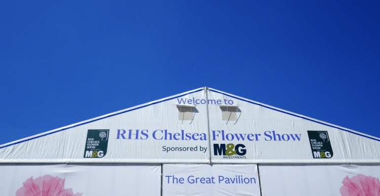 Here it is, Chelsea 2018 under a blue sky!