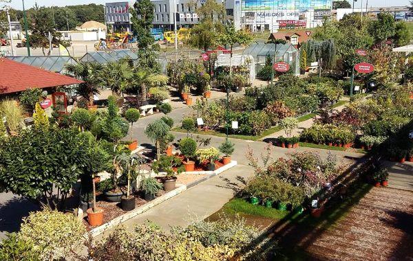 jardinerie du bois paris jardinerie