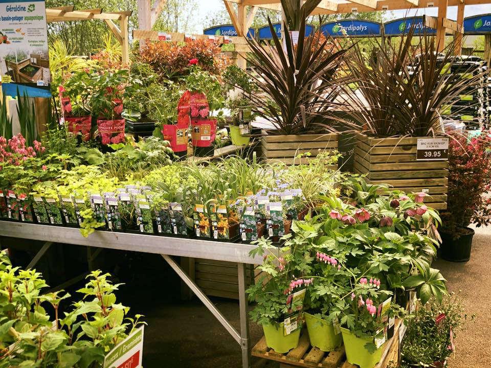 jardinerie scael jardin serres