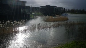 hoogwater feb 2013