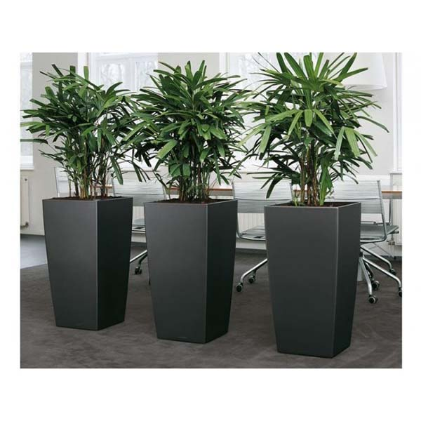 Tall Column Planters