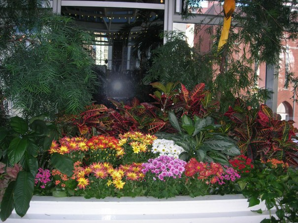 Fall flower display