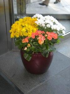 Lobby Flower Bowl