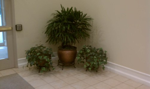 entry planters grouping