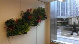 interior office green wall