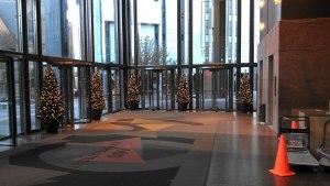 lobby christmas trees and light