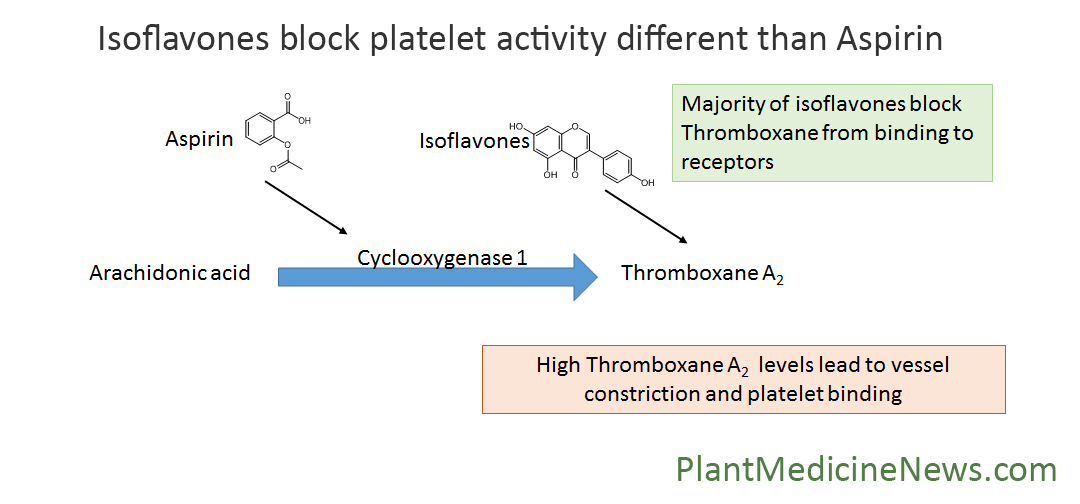 new research finds isoflavones block platelets from binding rh plantmedicinenews com Process Flow Diagram Template Manufacturing Process Flow Diagram