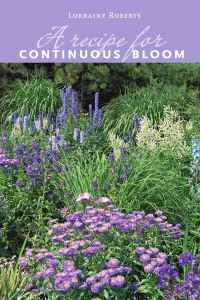Continuous Bloom