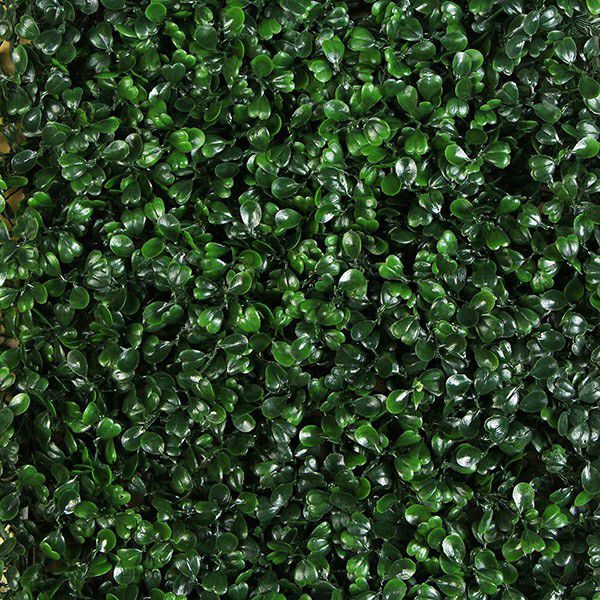 Artificial boxwood frame wall