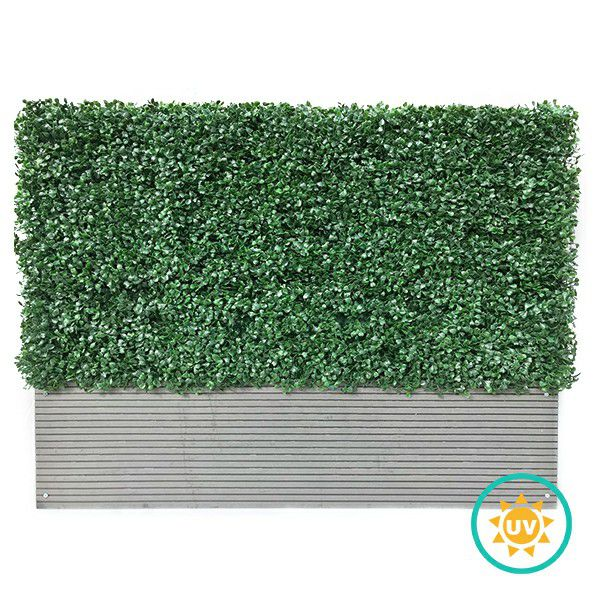 A001 Boxwood Artificial Hedges in Planters Milan Leaf