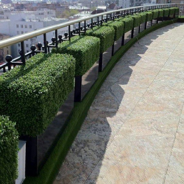 outdoor sight with artificial boxwood planters