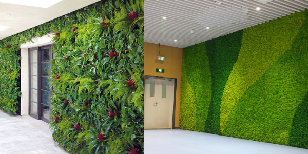 whether living walls or moss walls