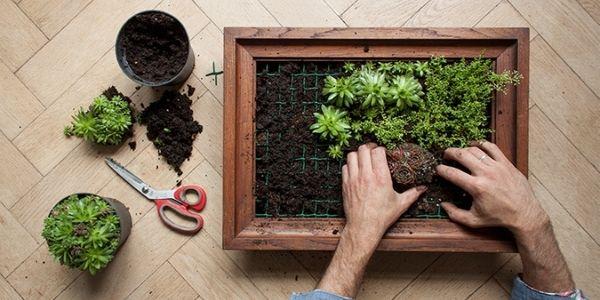 how to make vertical frame garden