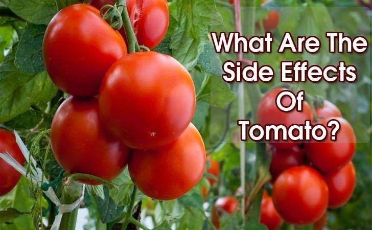 """efectos secundarios del tomate """"ancho ="""" 728 """"altura ="""" 450 """"srcset ="""" https://www.plantshospital.com/wp-content/uploads/2019/10/side-effects-of-tomato.jpg 728w, https://www.plantshospital.com/wp-content/uploads/2019/10/side-effects-of-tomato-300x185.jpg 300w """"tamaños ="""" (ancho máximo: 728px) 100vw, 728px """"src = """"https://www.plantshospital.com/wp-content/uploads/2019/10/side-effects-of-tomato.jpg"""" class = """"wp-image-3781 size-full lazyload""""></p><p> <noscript><img class="""