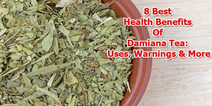 "Damiana-tea-benefits ""width ="" 720 ""height ="" 360 ""srcset ="" https://www.plantshospital.com/wp-content/uploads/2020/01/Damiana-tea-benefits.jpg 720w, https: //www.plantshospital.com/wp-content/uploads/2020/01/Damiana-tea-benefits-300x150.jpg 300w ""tamaños ="" (ancho máximo: 720px) 100vw, 720px ""src ="" https: // www.plantshospital.com/wp-content/uploads/2020/01/Damiana-tea-benefits.jpg ""class ="" wp-image-4199 size-full lazyload ""></p><p> <noscript><img class="