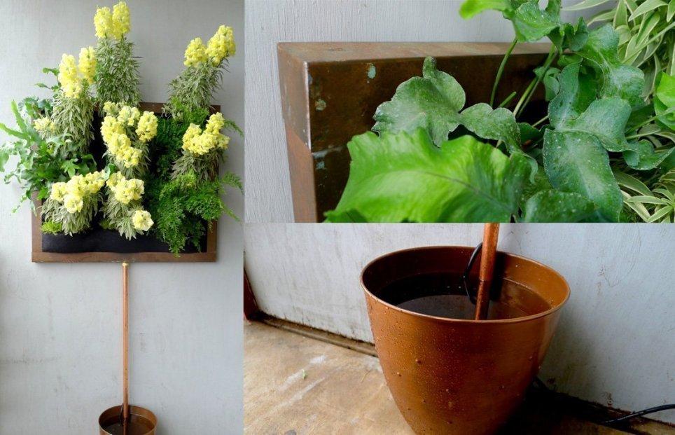 Chris Bribach, Plants On Walls. Custom Copper Framed Florafelt Vertical Garden.