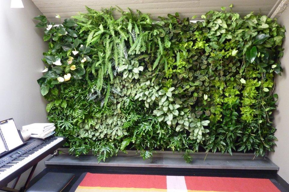 Chris-Bribach-Plants-On-Walls-Florafelt-Vertical-Garden-Planters-2